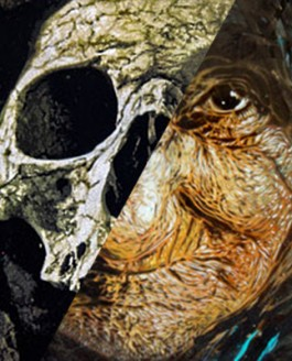 """Memento Mori"" Art Opening with C215 & Logan Hicks"